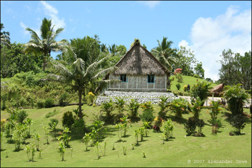 Fiji hut surrounded by palm trees