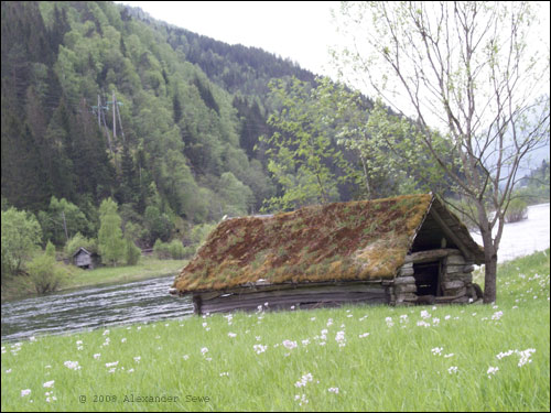 Hut with grass roof near river